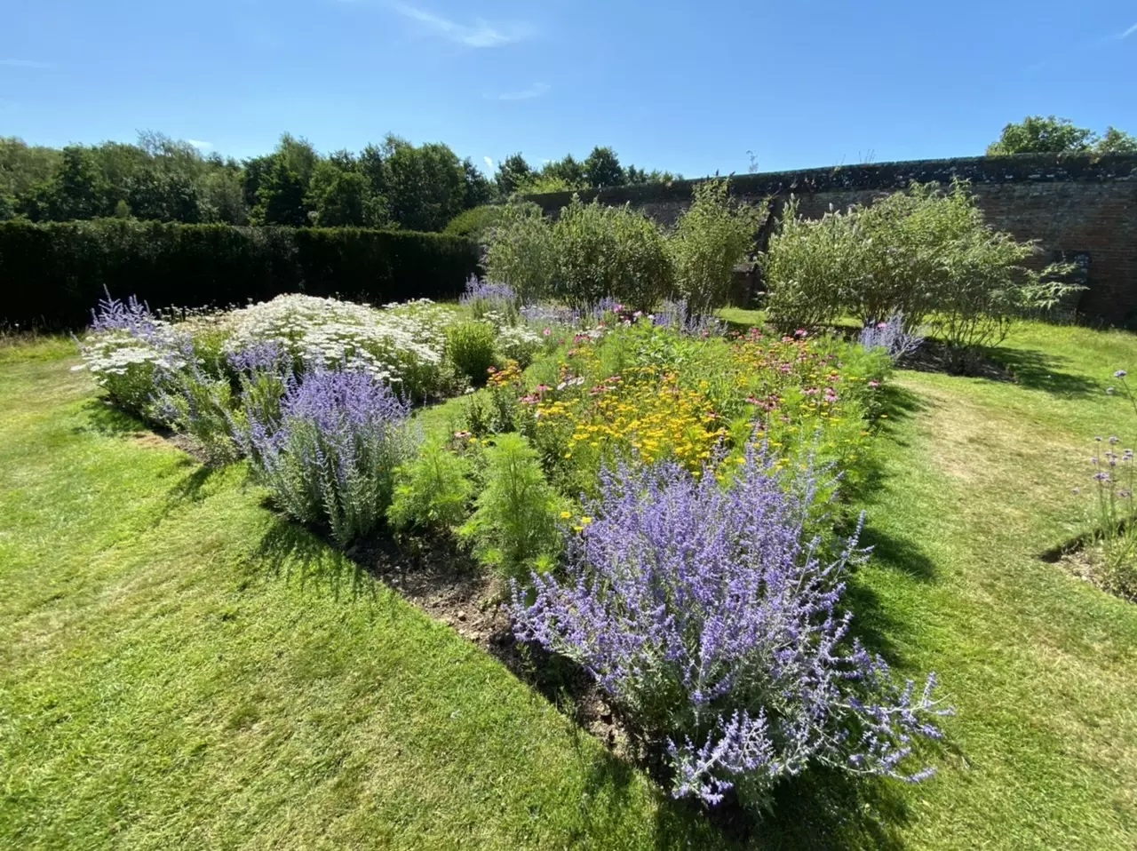 The wonderful Lower Garden is popular with bees and butterflies