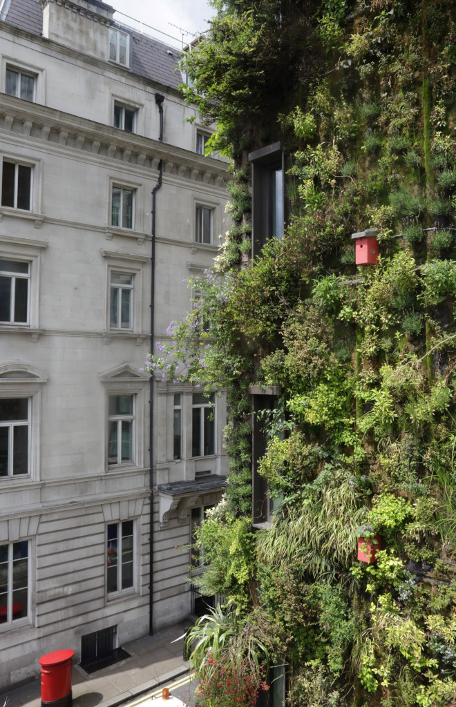 The Living Wall at the Athenaeum London