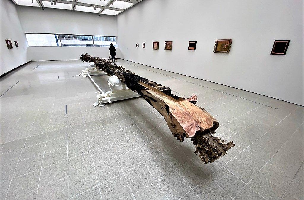 Redoubt: Matthew Barney, Hayward Gallery